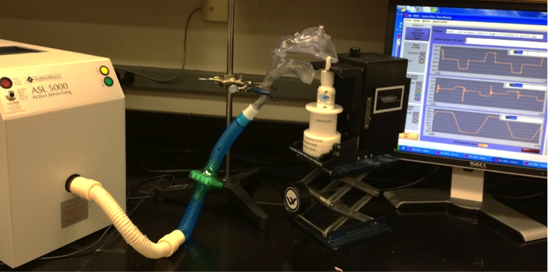 Experimental setup showing the ASL 5000 Breathing Simulator connected to a realistic nose mouth throat model during in vitro testing of a commercial nasal spray product. The ASL 5000 Breathing Simulator triggers the nasal spray actuator at the start of the inhalation maneuver.